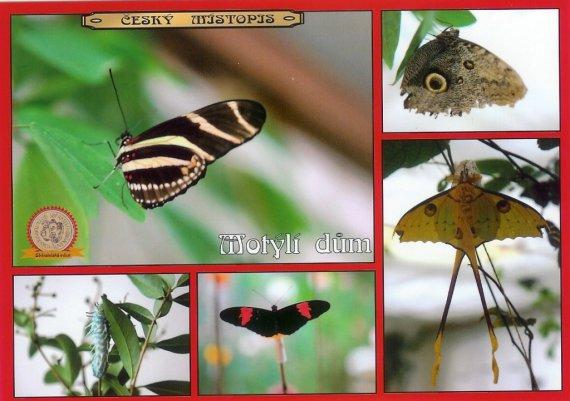 0269 - Motýlí dům
