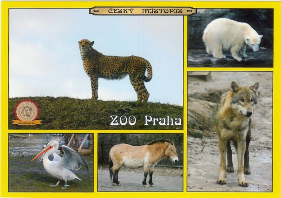 0272 - ZOO Praha